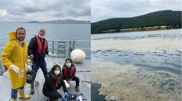 GTÜ 'Deniz Salyası' İçin Harekete Geçti