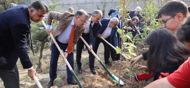 Çayırova'da 600 fidan toprakla buluştu