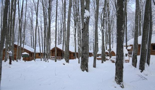 Erikli Tepe Tabiat Parkına yılın ilk karı düştü.