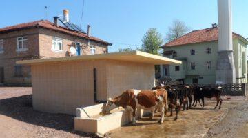 ''Tarım ve Hayvancılığa her alanda destek''