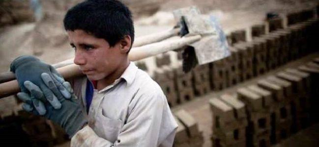 5-17 yaş arası 720 bin çocuk işçi var