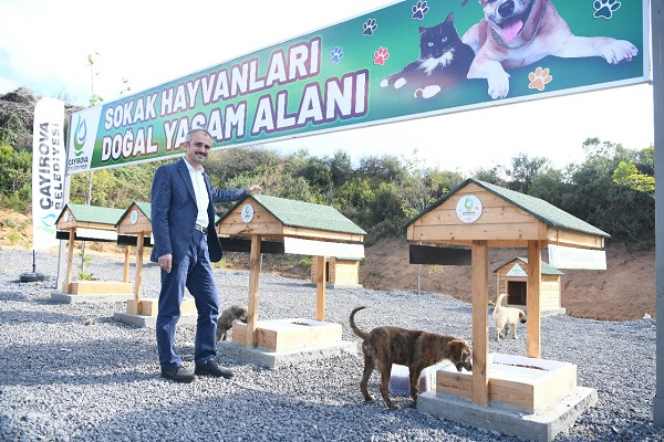 """""""Hayvan dostu bir belediyeyiz"""""""