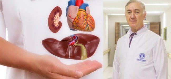 Organ Nakli Hastaları Yaz Aylarına Dikkat!