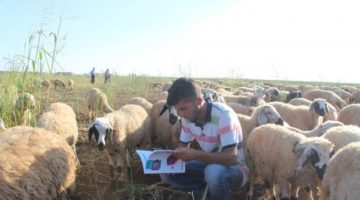 Çobanlıktan Diş Hekimliği'ne