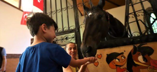 Çocuklar atlar ile buluşuyor