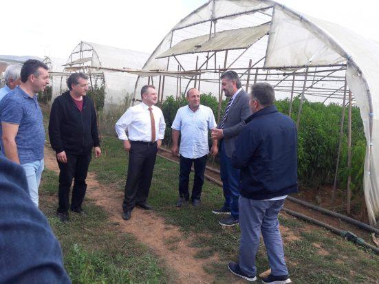 Gebzeli çiftçilere 800 bin TL'lik destek