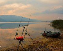 Sazan Balığı Şampiyonası Başlıyor