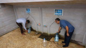 Böbrek hastalıkları için 'Gündüzlü Suyu'