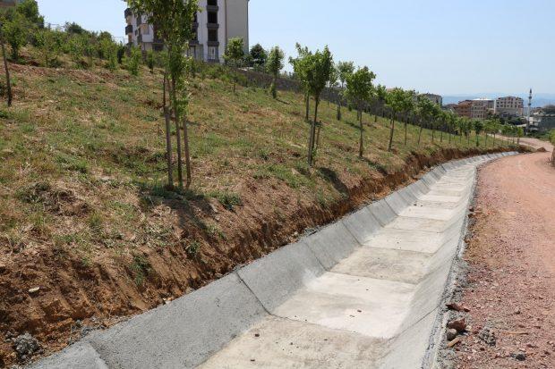2. etaba 3 bin ağaç dikildi