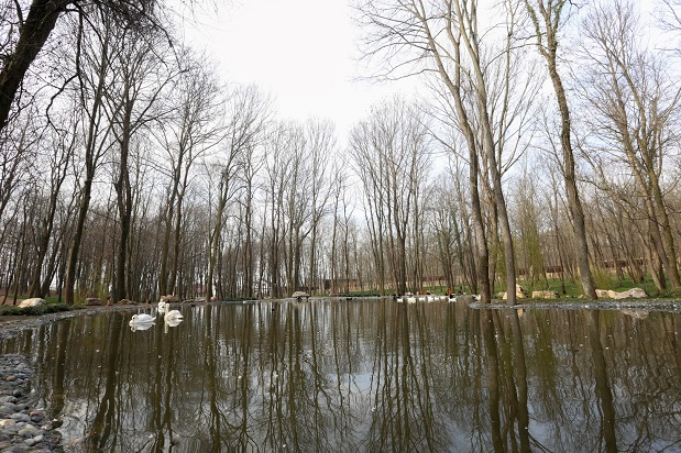 Avrupa'nın en büyük doğal yaşam parkı Kocaeli'de