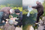 45.000 Adet Yavru Sazan Balığı bırakıldı