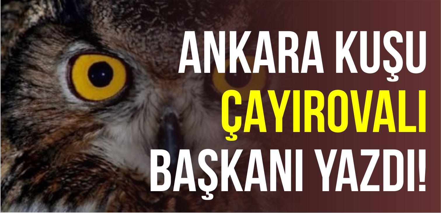 """""""Ankara Kuşu"""" Çayırova'lı Başkanı Yazdı!"""