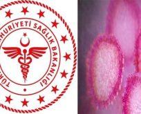 Kocaeli'nde 'Coronavirus' tesbit edilmedi!