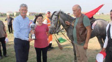 Gölcük Rahvan At Yarışları Sona Erdi